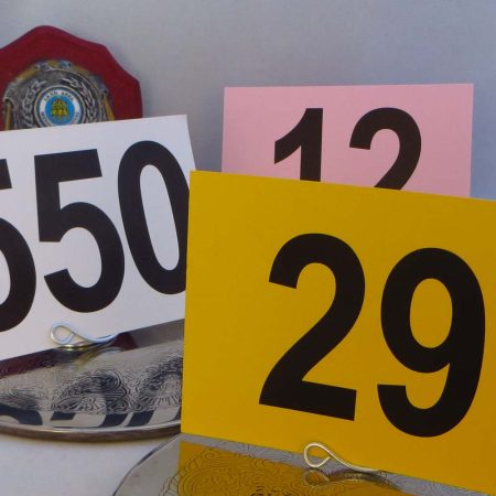 Basic Competitor Numbers