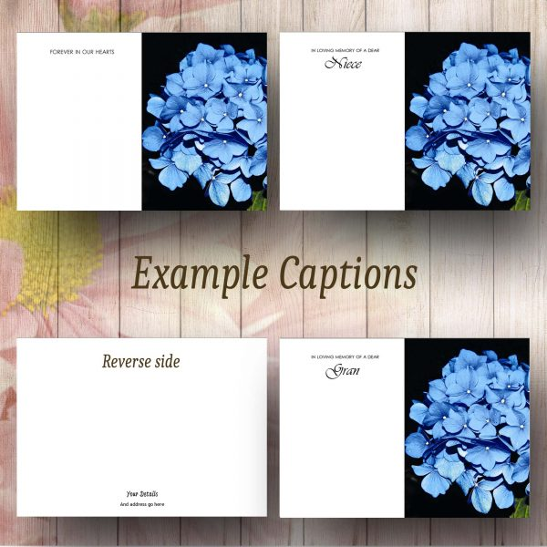 BlueHydrangea Text Example