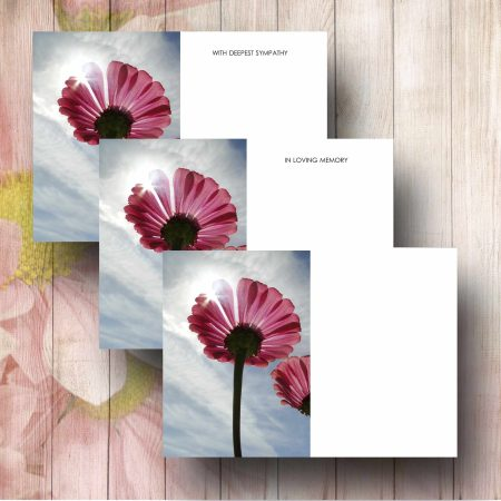 Red Daisies Florist Card