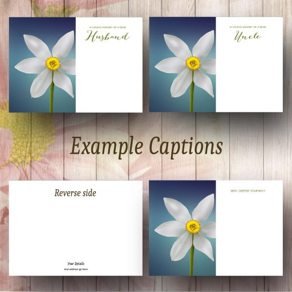 Delicate Narcissus Flowers Text Example