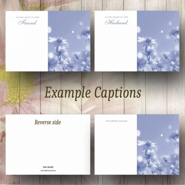 Blue Filter Daisies Text Example