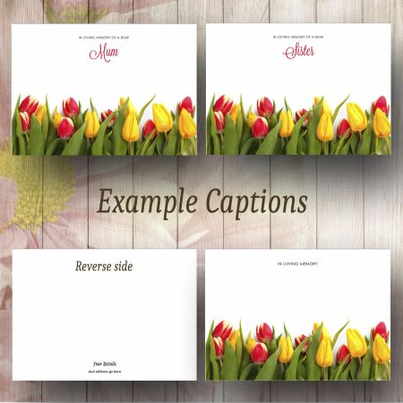 Bottom Tulip Boprder Text Example