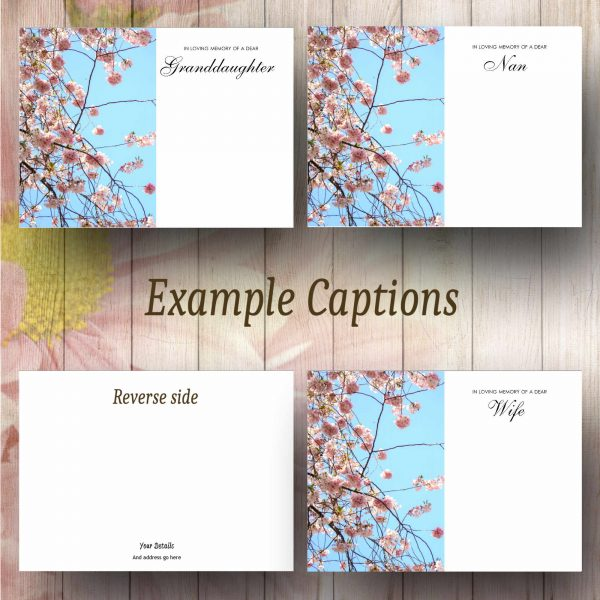 Pink Blossom Tree Text Example