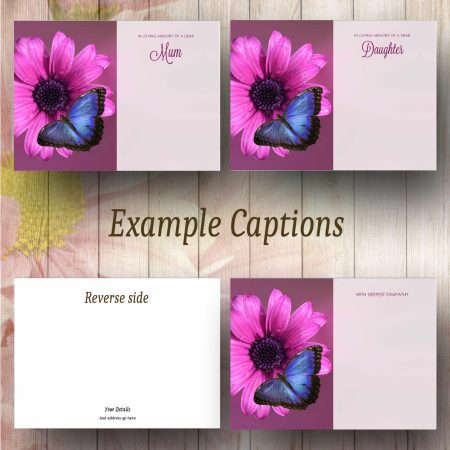 Blue Butterfly Text Example
