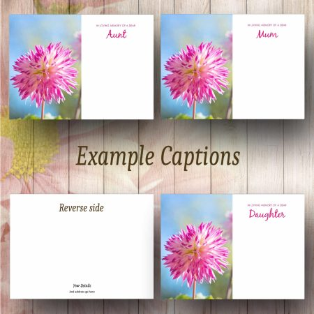 Pink Tipped Flower Text Example Florist Message Card