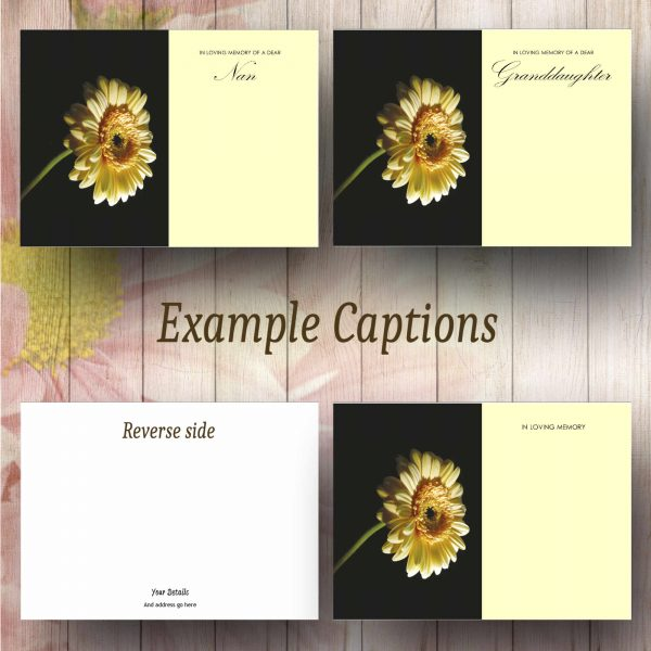 Yellow Gerbera Text Example Florist Message Card