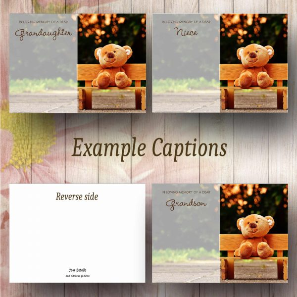 Bench Teddy Text_Example