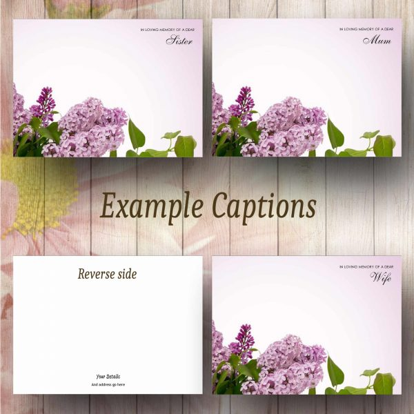 Lilac Tree Text Example