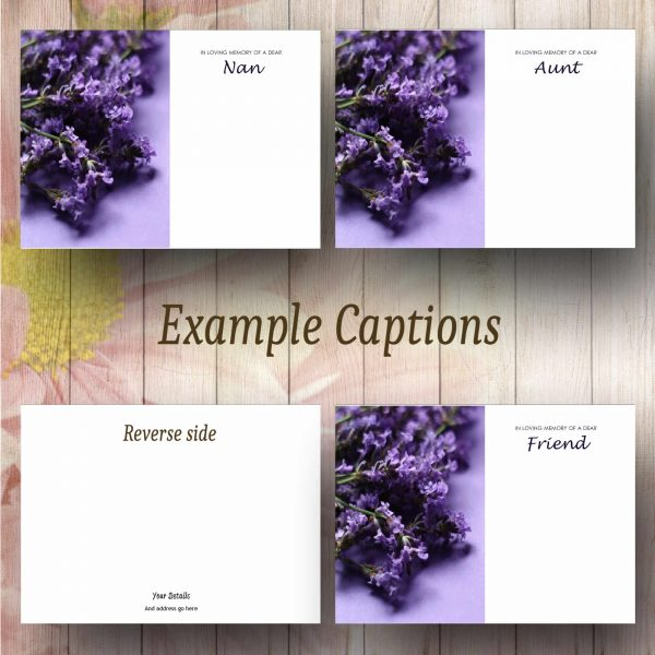 Lavender Flowers Text Example