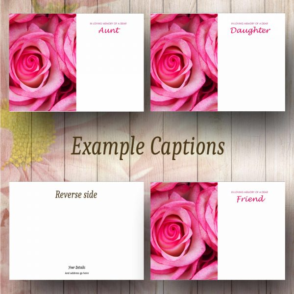 Pink Roses Text Example