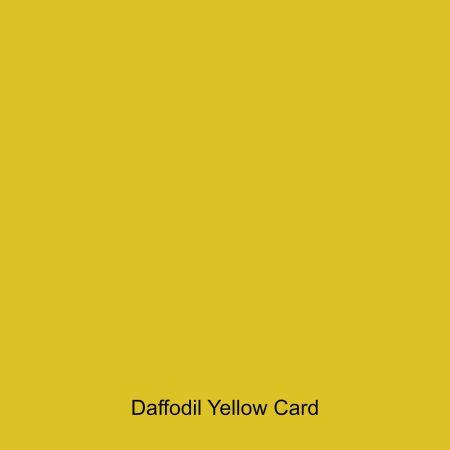Daffodil Yellow coloured card